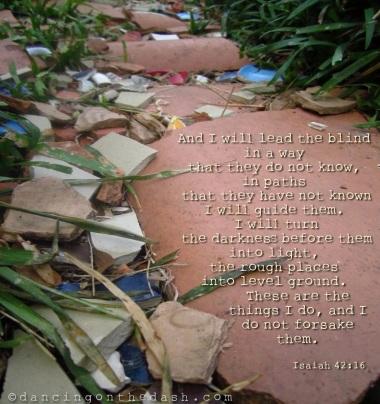 Isaiah 42-16 rough path